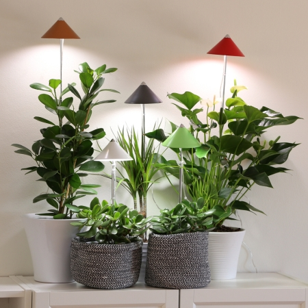 Luces led para plantas de interior